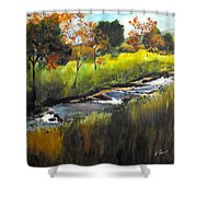 Rocky Stream Shower Curtain
