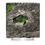 Rocky View Point Shower Curtain by Debbie Cundy