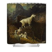 Rocky_mountain_goats Shower Curtain