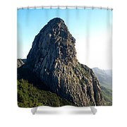 Rogue De Agando 2 Shower Curtain