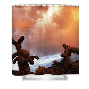 Roiling Sky Shower Curtain