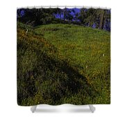 Rolling Hills With Poppies Shower Curtain