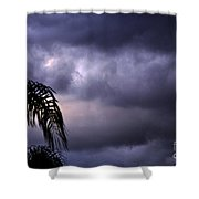 Rolling In . . .  Shower Curtain