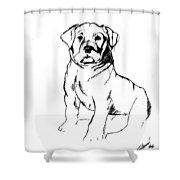 Roly Poly Shower Curtain