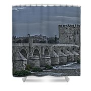 Roman Bridge In Cordoba II Shower Curtain