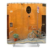 Roman Doors Shower Curtain