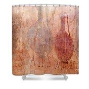 Roman Fresco Of Drink Pitchers, Herculaneum, Italy Shower Curtain