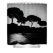 Roman Morning Shower Curtain