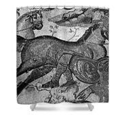 Roman Mosaic: Man & Horse Shower Curtain