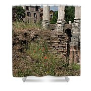 Roman Poppy Shower Curtain