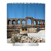 Roman Ruins Shower Curtain