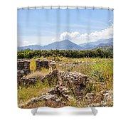 Roman Villa Ruins At Makry Gialos Shower Curtain