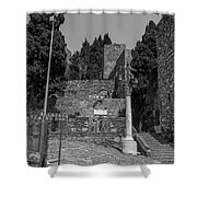 Roman Way Shower Curtain