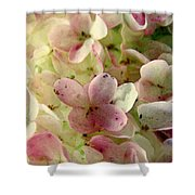 Romance In Pink And Green Shower Curtain