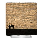 Romancing The Sheep Shower Curtain
