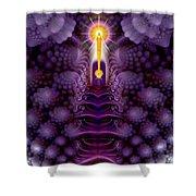 Romanesco Fractal I Am Presence Shower Curtain