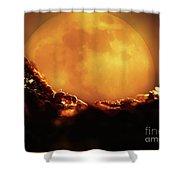 Romantic Ant Shower Curtain
