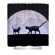 Romantic Cats Shower Curtain