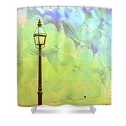 Romantic Dreams Shower Curtain