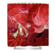 Romantic Love Shower Curtain