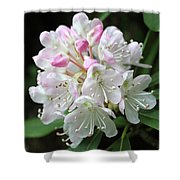 Romantic Rhododendron Shower Curtain