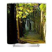 Romantic Sidewalk Shower Curtain