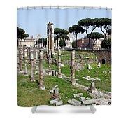 Rome Ruins Shower Curtain