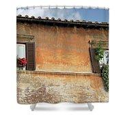 Rome Windows Shower Curtain