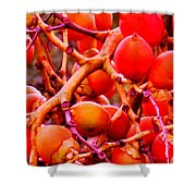 Romney Red Shower Curtain