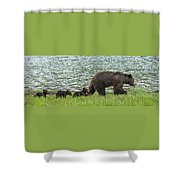 Romping By The Lake With Mama Bear Shower Curtain