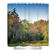 Rondaxe Color Shower Curtain