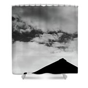 Roof #2882 Shower Curtain