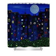 Roof Top View Shower Curtain
