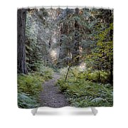 Roosevelt Grove Shower Curtain