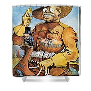 Roosevelt/mckinley Cartoon Shower Curtain