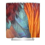 Rooster Art Palette Shower Curtain