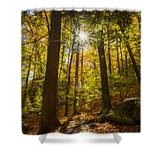 Rooster Comb Trail Shower Curtain