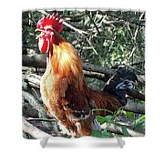 Rooster Crowing Shower Curtain