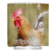 Rooster Jr. Shower Curtain