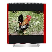 Rooster Living Shower Curtain