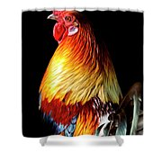 Rooster Portrait Shower Curtain