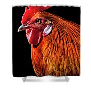 Rooster Pride Shower Curtain