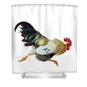 Rooster Running Shower Curtain