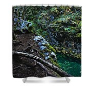 Rooted In Emerald  Shower Curtain