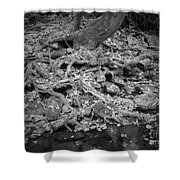 Roots And More Roots Shower Curtain