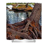Roots On The River Shower Curtain