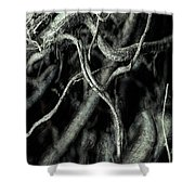 Roots Series #1 Shower Curtain