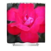 Rosa Roja Shower Curtain