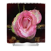 Rosa Rose Portrait Shower Curtain
