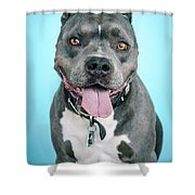 Rascal Shower Curtain